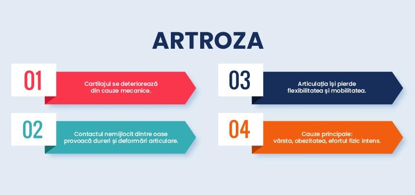 Artroza